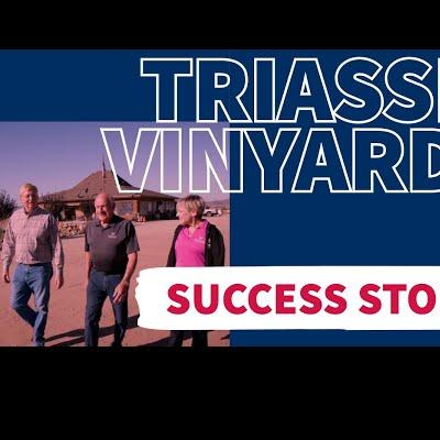 Triassic Vineyards, Tehachapi